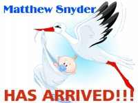 Baby announcement yard sign with image of stork delivering baby